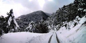 Karabük Karaağaç Köyü