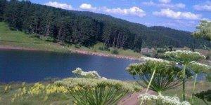 Karabük Kayacık Köyü