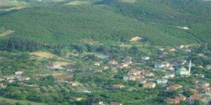 Kızıltepe Alemdar Köyü