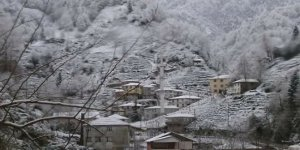 Kalkandere Esendere Köyü