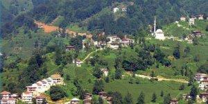 Kalkandere Hurmalık Köyü