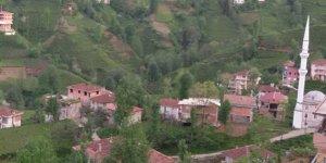 Kalkandere Yeniköy Köyü