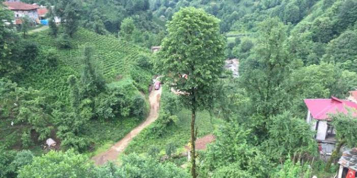 Pazar Şendere Köyü