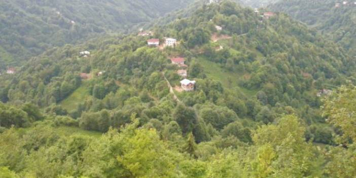 Pazar Şentepe Köyü