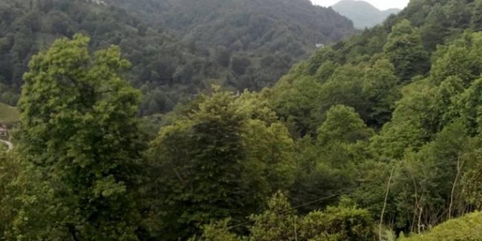 Pazar Yücehisar Köyü