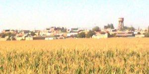 Kızıltepe Arıklı Köyü
