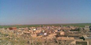 Kızıltepe Başak Köyü