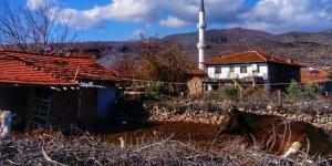 Selendi Kazıklı Köyü