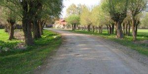Gerede Dursunfakı Köyü