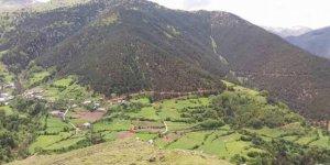 Torul Arpalı Köyü