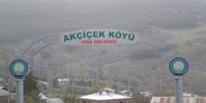 Alucra Akçiçek Köyü