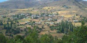 Alucra Aktepe Köyü