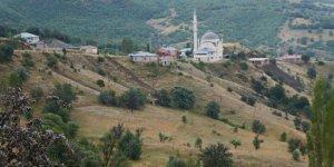 Alucra Arda Köyü