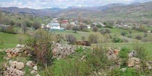 Alucra Pirili Köyü