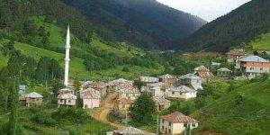 Alucra Tohumluk Köyü