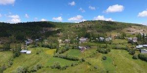Alucra Yeşilyurt Köyü