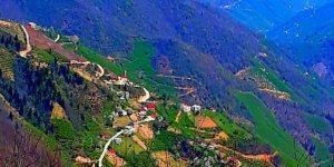 Bulancak Ardahan Köyü