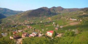 Bulancak Damudere Köyü