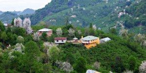 Bulancak İnecek Köyü