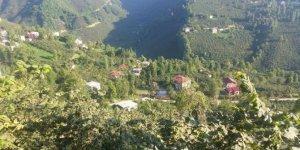 Bulancak Karacaresul Köyü