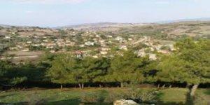 Susurluk Ömerköy Köyü