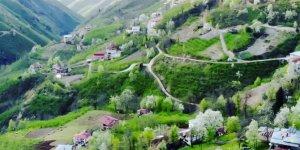 Bulancak Küçükdere Köyü