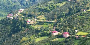 Bulancak Yeşiltepe Köyü