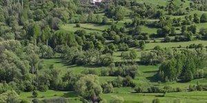 Posof Kumlukoz Köyü