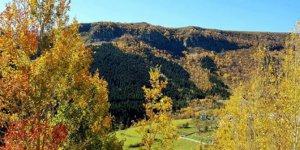 Posof Kurşunçavuş Köyü