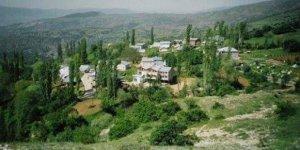 Çamoluk Kayacık Köyü