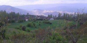 Çamoluk Pınarlı Köyü