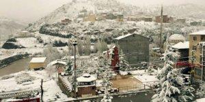 Çamoluk Yeniköy Köyü