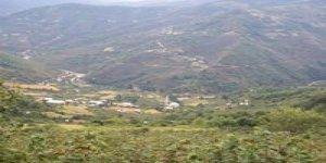 Dereli Kurtulmuş Köyü