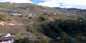 Dereli Yıldız Köyü