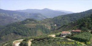 Doğankent Yeniköy Köyü