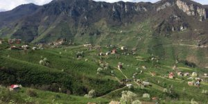 Espiye Akkaya Köyü