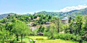 Espiye Çepni Köyü