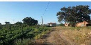 Gelibolu Adilhan  Köyü