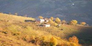 Espiye Güzelyurt Köyü
