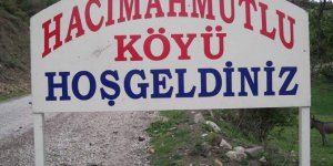 Espiye Hacımahmutlu Köyü
