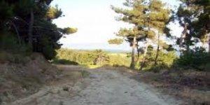 Gelibolu Pazarlı  Köyü