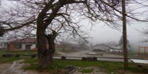 Lapseki  Hacıgelen Köyü