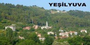 Abana Yeşilyuva Köyü