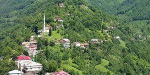 Eynesil Yarımca Köyü