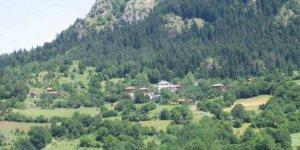 Ağlı Yeşilpınar Köyü