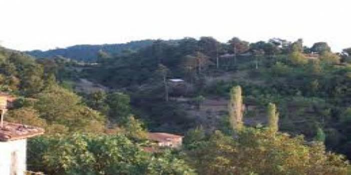Yenice Alancık Köyü