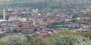 Yenice Armutcuk Köyü