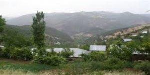 Yenice Aşağıkaraaşık Köyü