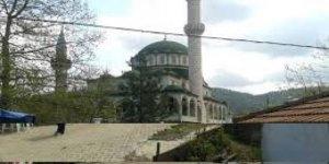 Yenice Çınarcık Köyü