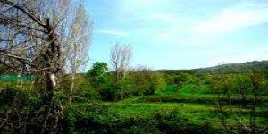 Yenice Kırıklar  Köyü